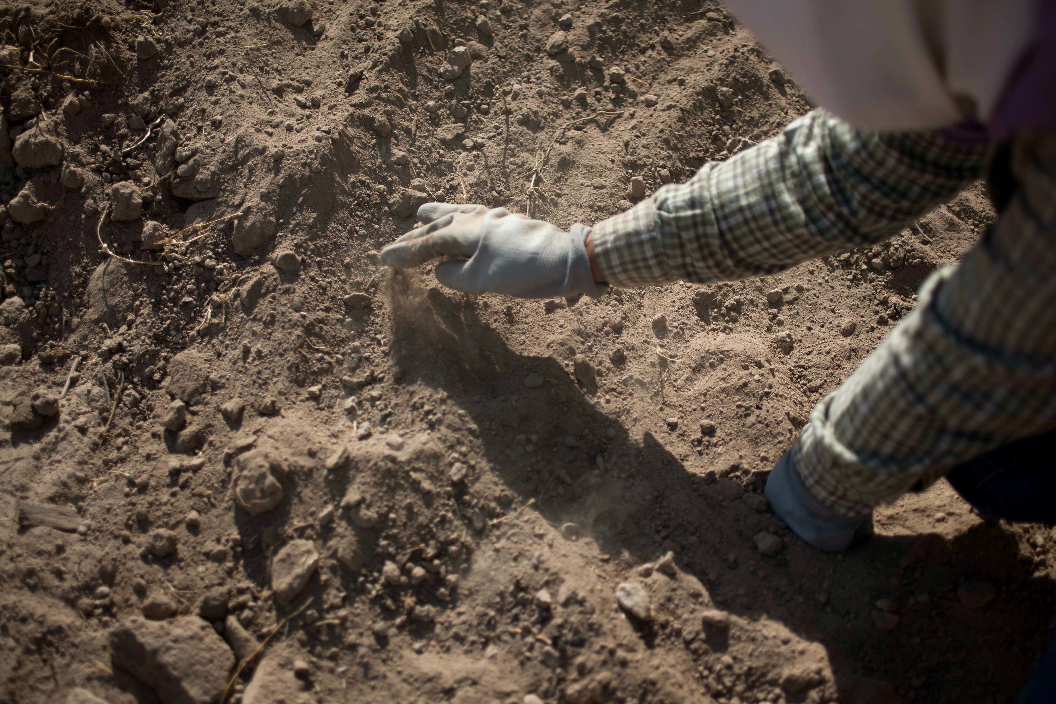 """Silvia Ortiz busca a su hija Fanny, quien desapareció en Torreón, Coahuila, en 2004. Formó el grupo Vida para buscar en las """"cocinas"""" de los zetas y en las casas de seguridad, recolectando los pequeños trozos de huesos que no recolectan los peritos. foto: Mónica González"""