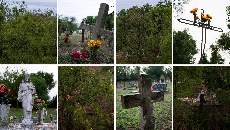 graves-1553834105